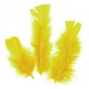 Feathers Yellow 30g