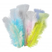 Feathers Pastel 10g