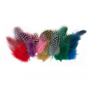 Guinea Fowl Feathers 10g Assorted 100's