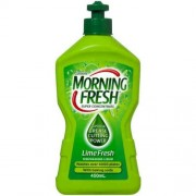 Morning Fresh-Lime Fresh 450ml