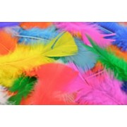 Feathers - Assorted Colours (Pack of 250)