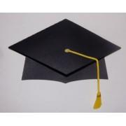 Paper DIY Graduation Hats (Pack of 20)