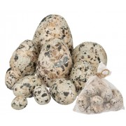 Poly Speckled Eggs Assorted 10s