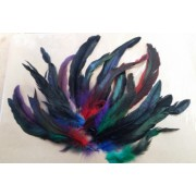 Feathers Cocktail 10-30cm 19pk