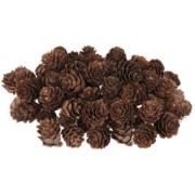 Mini Pine Cones 190g