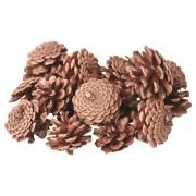 Pine Cones 200g