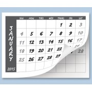 Calendar Tabs A4 2020 (Pack of 10)